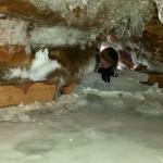 icecave9